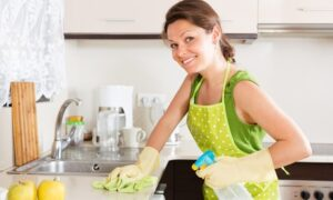 Regular house cleaning or Deep steam cleaning