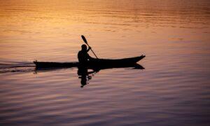 Single Kayak or Stand-Up Paddle