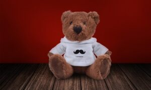 Teddy Bear in Personalised Hoodie