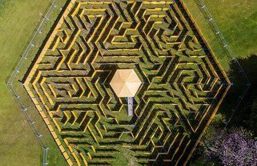 Full-Day Maze Entry