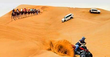Abu Dhabi Desert Safari: Child (From AED 69)
