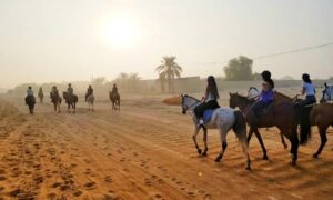 Desert Horse Riding Experience
