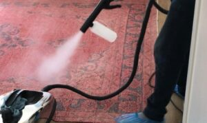 Home Sanitisation and Disinfection