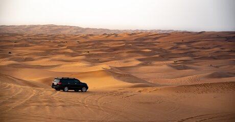 Red Dunes Safari Experience
