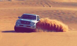 Desert Safari with Falcon Photos