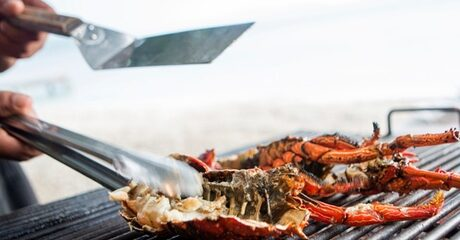 Seafood Buffet with Soft Drinks: Child (AED 70)